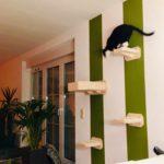 Kletterlandschaft für Katzen