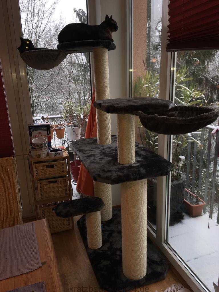 kratzbaum f r gro e und schwere katzen individueller. Black Bedroom Furniture Sets. Home Design Ideas