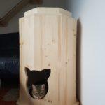 Kratztonnen für Katzen