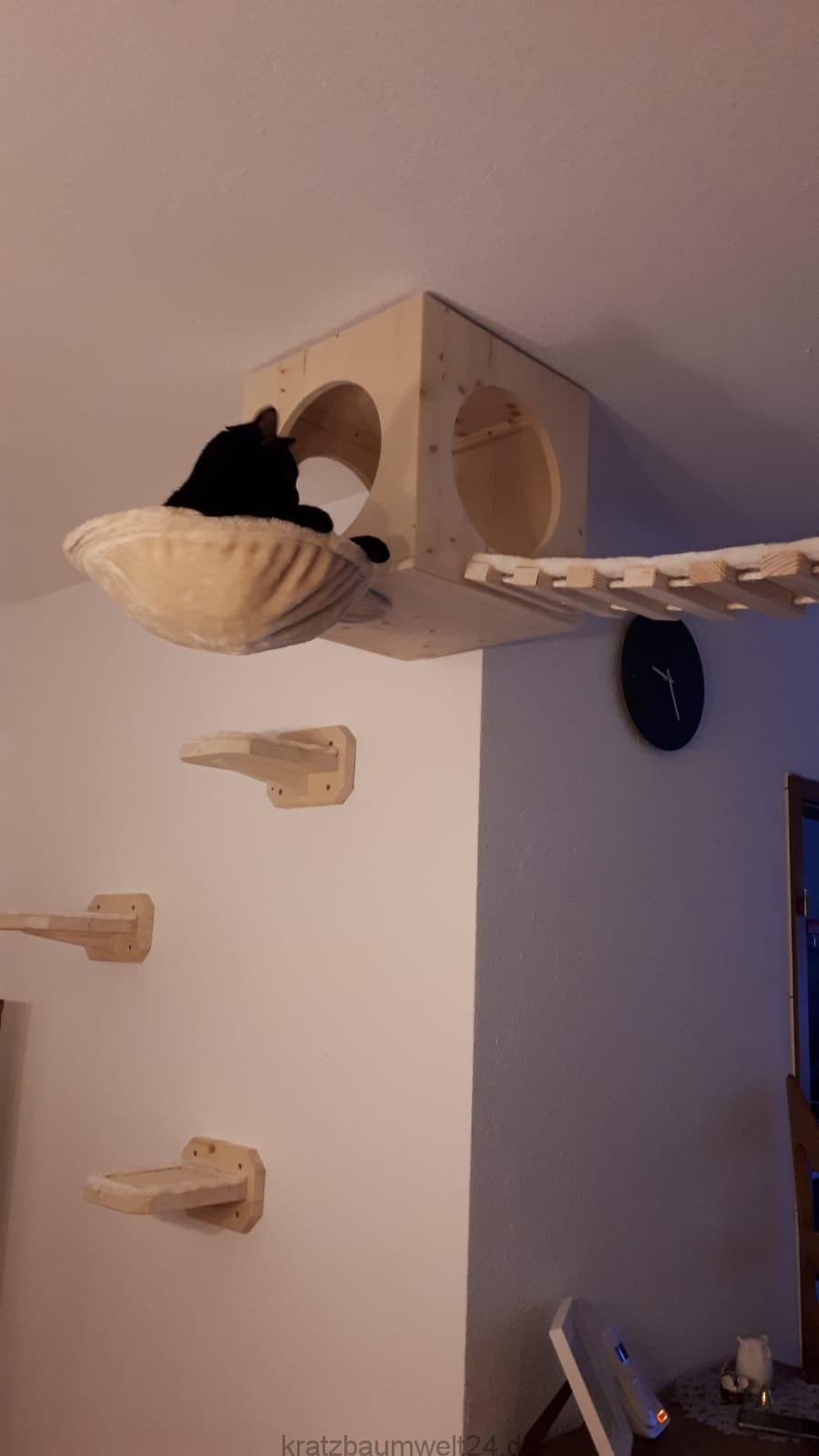 wandkratzbaum wandelemente f r katzen h hle f r katzen. Black Bedroom Furniture Sets. Home Design Ideas