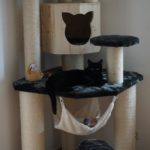 Exklusive Katzenmöbel